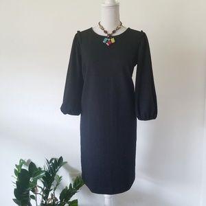 NWT Ann Taylor Long Sleeve Crepe Ruffle Dress S